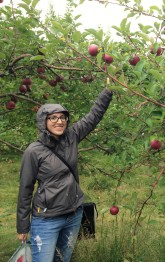 apple-picking-solo