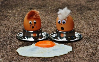 egg-1364869_1920